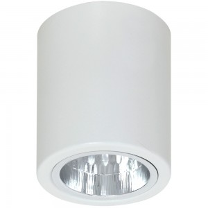 DOWNLIGHT round white 7234 Luminex